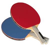 Table Tennis Equipment Ping Pong Equipment Balls